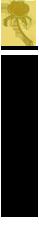 アクリルレーザー加工の技術紹介